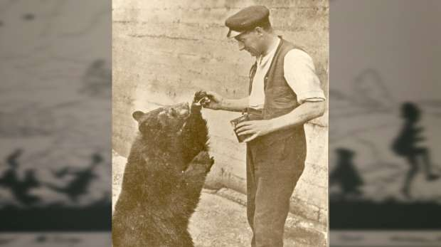 Photo of Winnie the bear with her keeper, with a background illustration from Winnie the Pooh book.