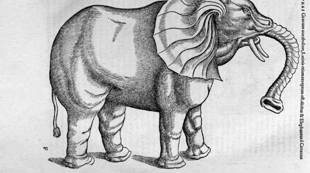 Elephant from Konrad Gessner's Historiae animalium