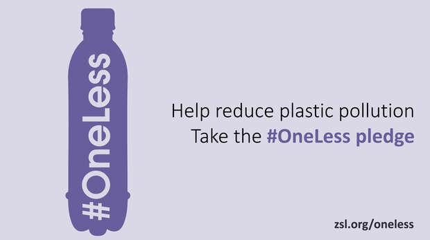 Take the #OneLess pledge!