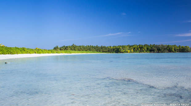 Chagos beach