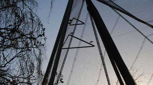 Snowdon Aviary