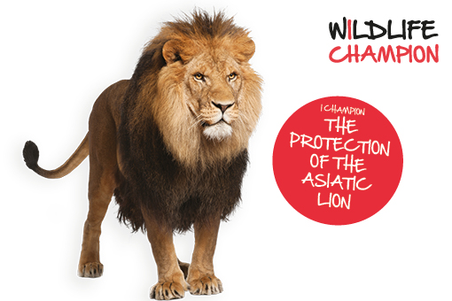 I Champion the Protection of the Asiatic Lion
